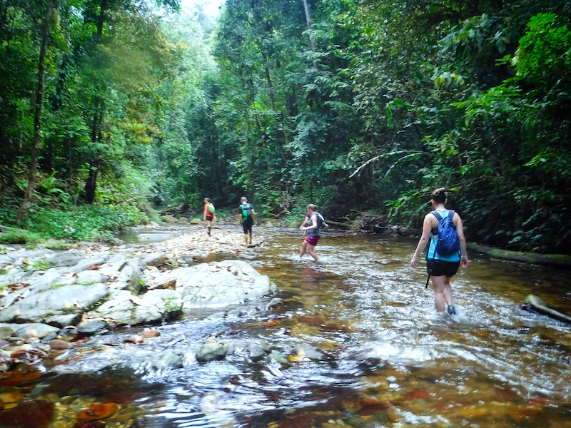 Line of hikers wading through a shallow river on the way to Three Pools, Trinidad.