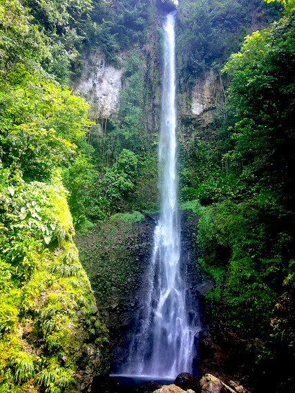 Tall, narrow waterfall into a lush valley in Dominica.