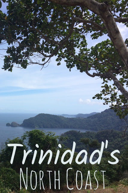 View of Caribbean from the jungle with text: Trinidad's North Coast