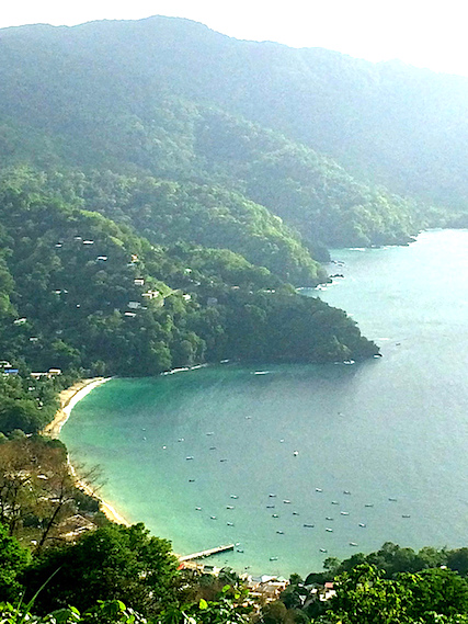 View of emerald water and dense treed hills around Charlotteville, Tobago.