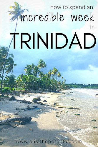 Coconut palm lined deserted Caribbean beach with text: How to spend an incredible week in Trinidad