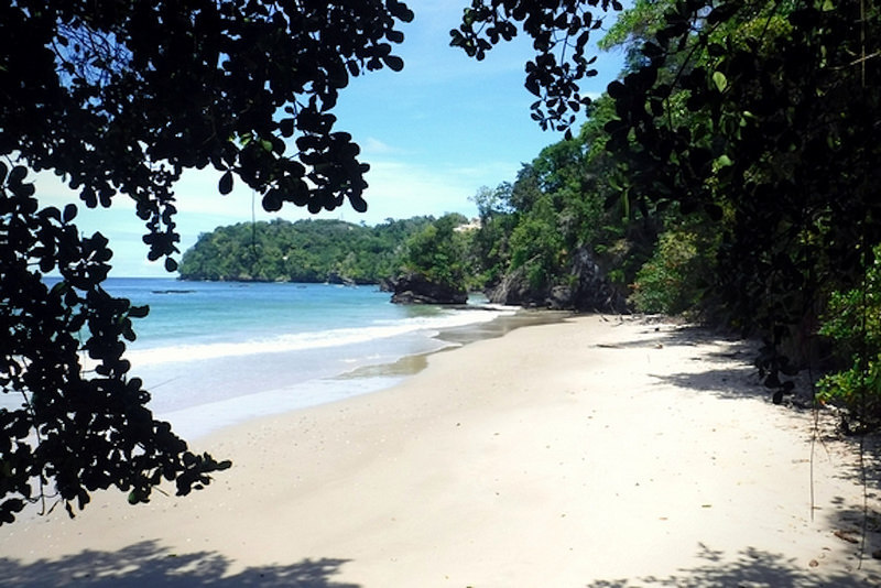 View of an empty Caribbean beach in Trinidad from between the trees