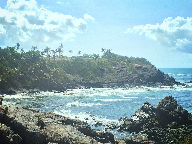 Rocky bay with blue water and palm trees on Trinidad's north east coast.
