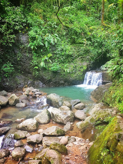 Waterfall into small emerald pool on hiking trail in El Valle, Panama.