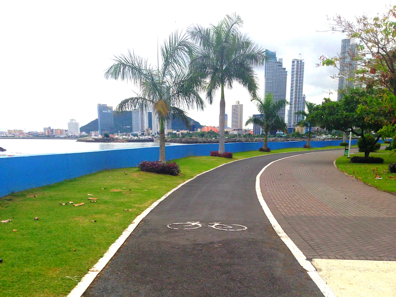 Bike path with grass and palm trees bordering the Pacific Ocean on the Cinta Costera, Panama City, Panama.