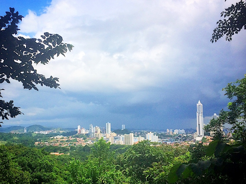 View of many tall buildings in Panama City skyline through forest cover