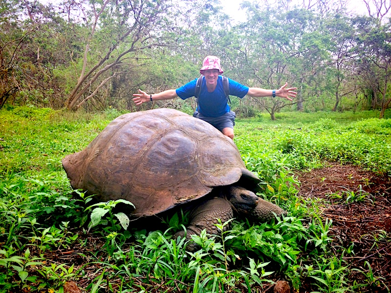 Man standing with his arms wide behind a giant Galapagos tortoise that is as wide as his arm span.