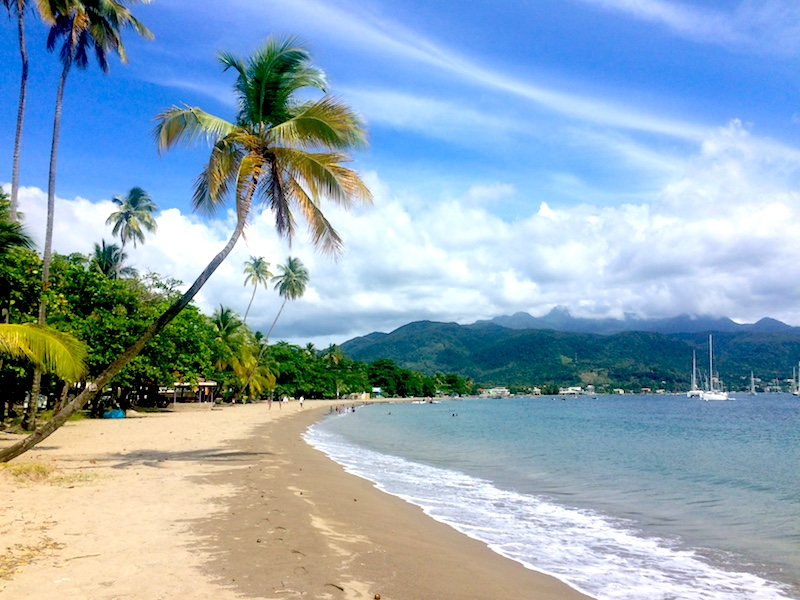 Palm trees reaching over golden beach to blue Caribbean Sea in Dominica.