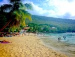 Anse Dufour beach with people laying under palm trees or snorkelling in water, Martinique.