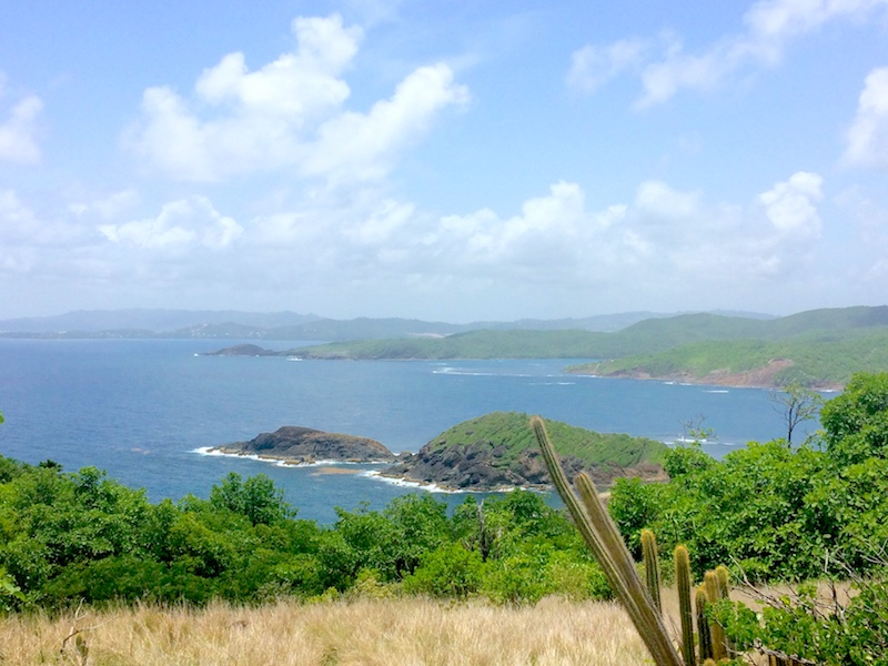 View of blue sea at Presqu'ile de la Caravelle across cactus and green hills in Martinique.