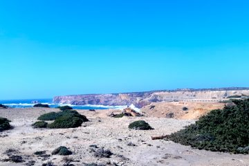 The cliffs and blue ocean of the Alentejo region of Portugal