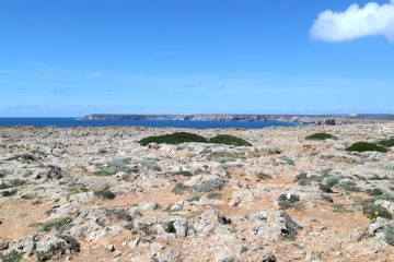 looking across rocky ground and cliffs to Cabo Sao Vicente