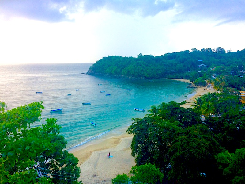 Crescent-shaped bay from above with emerald water and backed by jungle, Castara Bay in Tobago