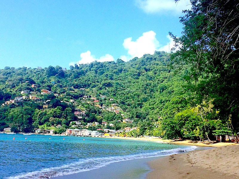 Long, crescent bay with colourful houses and jungle climbing up the hillside in Charlotteville, Tobago.