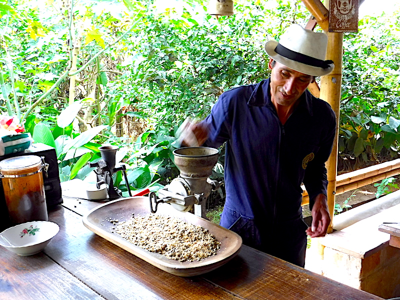 Coffee worker grinding coffee beans on coffee plantation in Salento, Colombia.