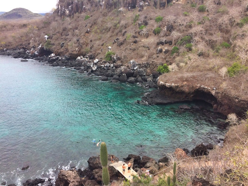 Crystal clear emerald water of Darwins Cove with people snorkelling.