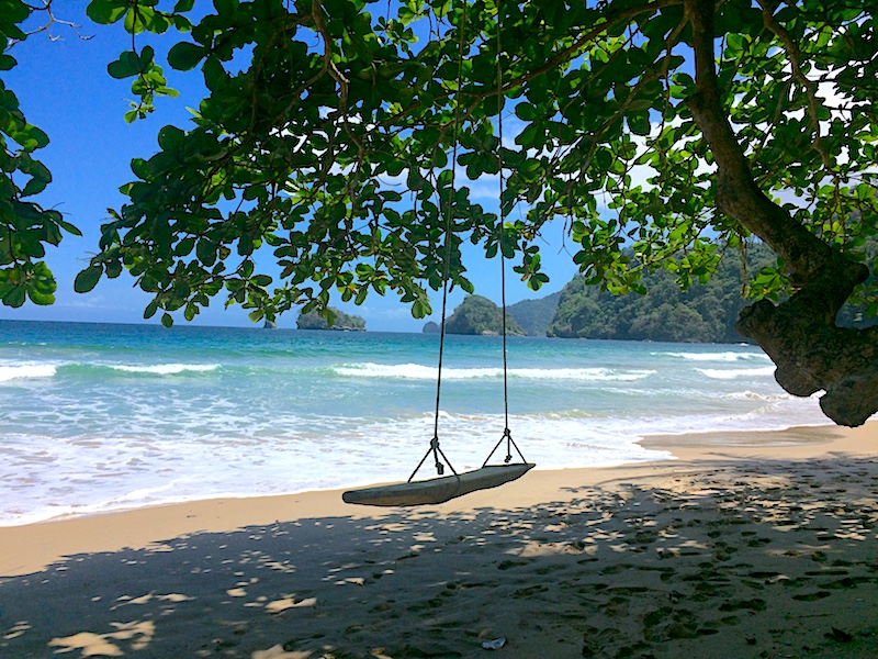 Driftwood swing hanging under a tree on a beautiful Caribbean beach, Paragrant Bay, Trinidad