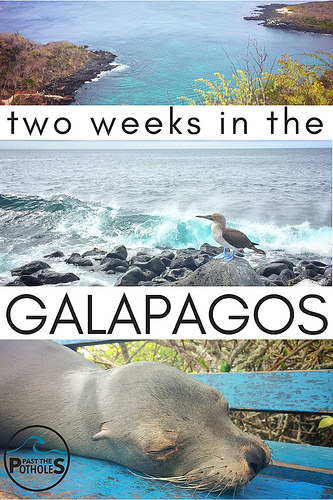 Pictures of Galapagos scenery and animals with text: two weeks in the Galapagos.