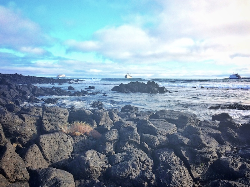 View across lava rocks to ocean with small cruise ships anchored in Galapagos.