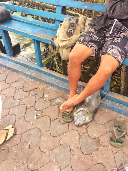 Man with a fish at his feet at Puerto Ayora Fish Market, Galapagos