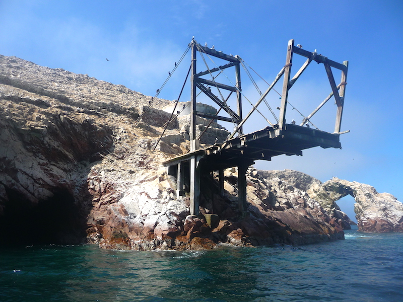 Old pier extending from rocky island covered in birds at Islas Ballestas, Peru