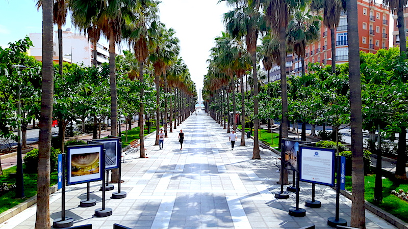Long path lined with palm trees and art exhibits called the Ramblas in Almeria, Spain.