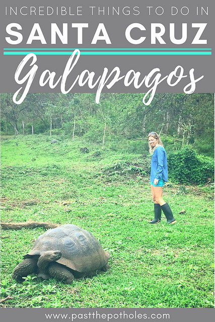 """Girl walking in a field with a giant Galapagos tortoise with text """"Incredible things to do in Santa Cruz, Galapagos""""."""