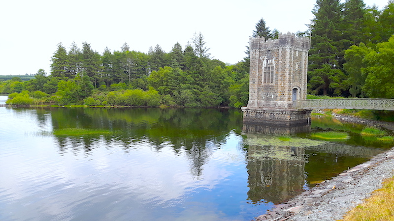 Tower built in the water surrounded by trees at Vartry Reservoir in Roundwood, Ireland.