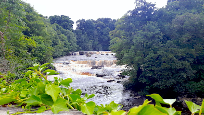 Series of small waterfalls in a wide river in Aysgarth, Yorkshire Dales, England.