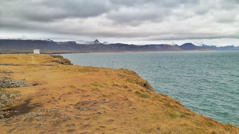 Yellow grass covered cliffs with a view to snow-capped mountains across the water in Arnarstapi, Iceland.