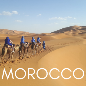 line of people riding camels in Sahara Desert, Morocco