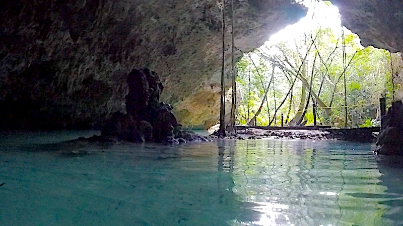 Looking out to a forest from inside a turquoise water filled cave in a cenote in Mexico.