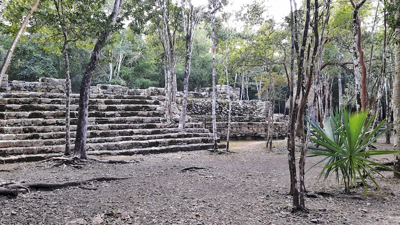 Small building with stone steps surrounded by trees in Coba ruins, Mexico.