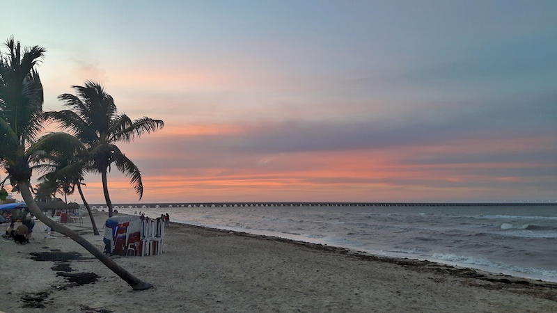 Red sunset behind palm trees on the beach with the world's longest pier in the background in Progreso, Mexico.