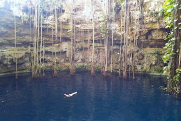 Woman floating in deep blue water of Cenote Oxman, Valladolid Mexico, surrounded by hanging roots.