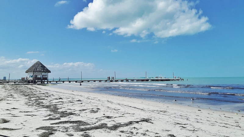 The 15 Best Things to do in Holbox, Mexico ( + complete guide