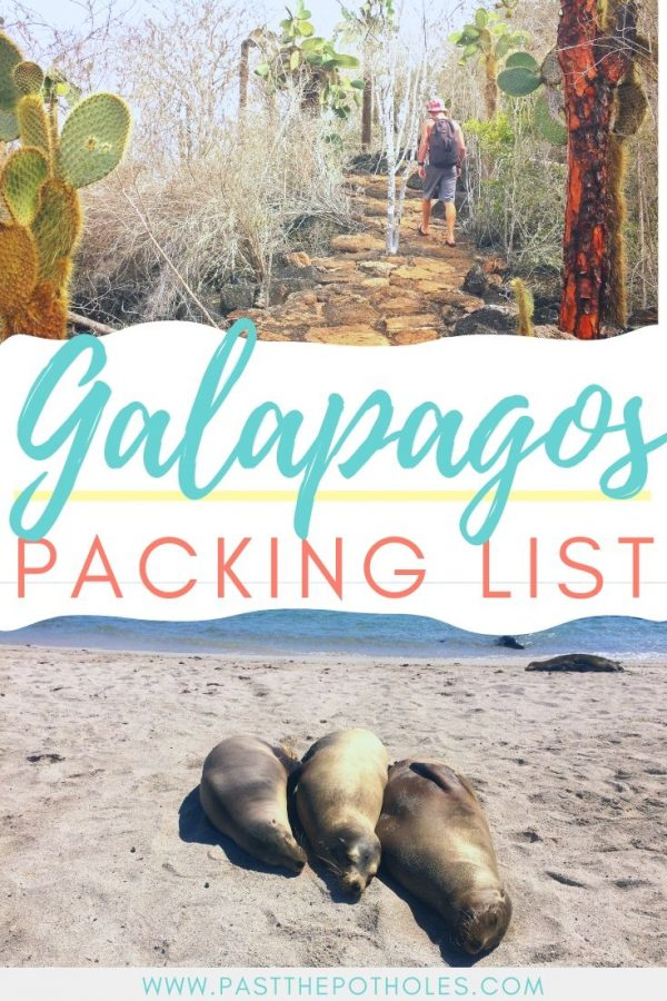 Sea lions and cactus with the text: Galapagos Packing List.