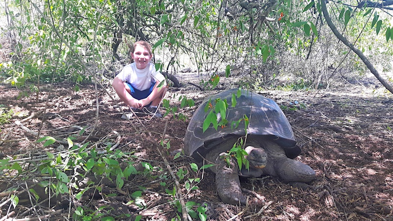 Boy crouching behind a giant tortoise under a tree on the trail to Wall of Tears, Isabela Galapagos.