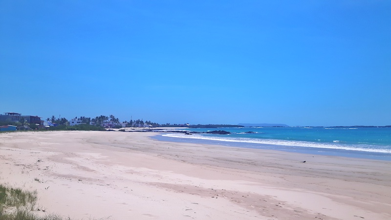Wide white sand beach and turquoise water - Playa Puerto Villamil in Isla Isabela Galapagos.