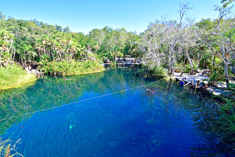 Deep blue water surrounded by green jungle at Cenote Cristal, Mexico.
