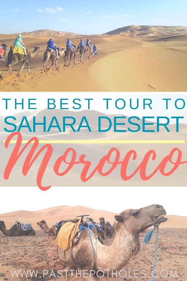 Camels walking along sand dunes in Sahara Desert with text: The best tour to Sahara Desert, Morocco
